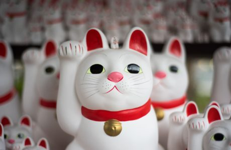 Japanese maneki-neko figurines by Alan Pham on Unsplash